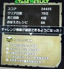 DSC09625.JPG